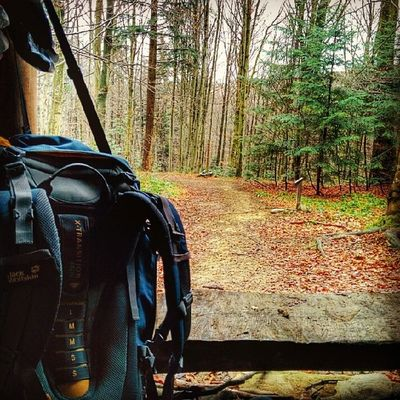 Mountains Bieszczady Trip Poland backpack trees forest