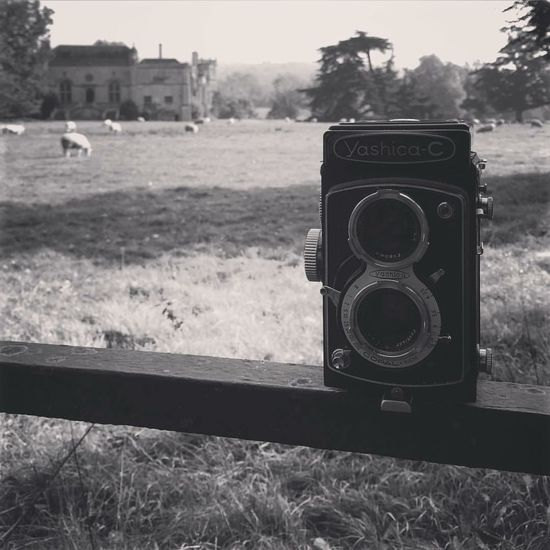 Twin lens shooting at Lacock Abbey First Eyeem Photo Lacockabbey IPhoneography Blackandwhite Black & White Blackandwhite Photography Travel Twin Lens Reflex Fence Sheep Sheep Grazing Manor House