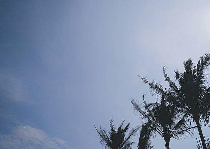 Still Remembered Sunday Twilight Nights  Sun Sunset Clouds Cloudscape Sky Skyporn Nature Justliving Livefolk Skyfolk Mobilemag Skyscape Naturelovers Nature_perfection Landscape Vscogram Vscocam Vscogrid Vscogood VSCO Vscosky Instasky Minimalsm createexplore indonesia