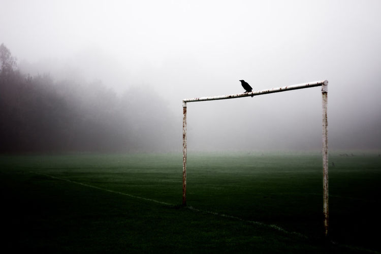 Beauty In Nature Court Day Field Fog Foggy Goal Post Grass Green Color Landscape Nature No People Outdoors Playing Field Pole Remote Rural Scene Scenics Sky Soccer Tranquil Scene Tranquility