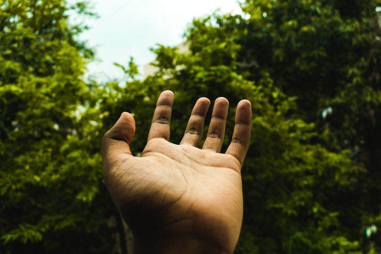 Cropped hand of man gesturing against trees