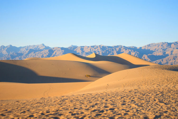 Death Valley Sand Dunes Arid Climate Blue California Clear Sky Day Death Valley Desert Horizontal Landscape Nature No People Outdoors Sand Sand Dune Scenics Sky USA