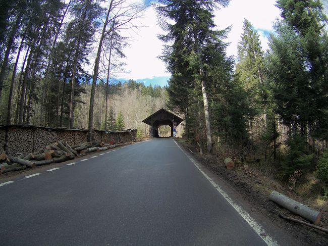 Schwandenbrücke Wooden Bridge Holzbrücke Bicycle Trip Fahrradtour Tomtom Tomtom Bandit