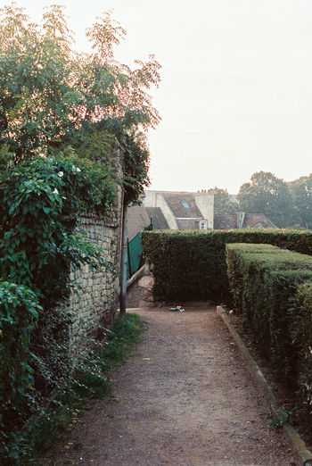 A path 24x36 35mm 50mm Believeinfilm Canon Ftb Film Filmisnotdead Kodak Portra 400