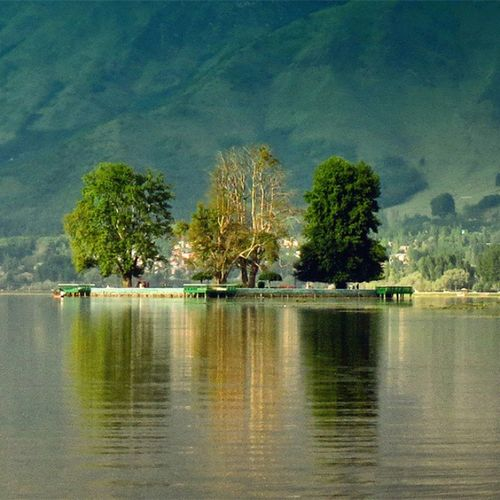 "Homesickness; they say, is the distress or impairment caused by an actual or anticipated separation from home. And what about being homesick at home? Is ""home"" a place or a feeling?  A memory or a reality?  A person or the idea of a person? Location : Char Chinar at Dal Lake. Home Thoughts Memories Journey Metaphor Sentiment Feeling Lake Photography Innerlandscape"