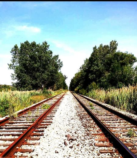 Find your self, than find the right track. Positive Vibes Positive Energy  railroad track Tree Diminishing Perspective Landscape Nature Sky Day Outdoors Parallel Beauty In Nature Long Walk Home Longwalk Relationships CNRailways 2ways Choices Direction Hiddencity Getting Inspired Cityscape Peaceofmind Along The Way Canada Coast To Coast Secret Places