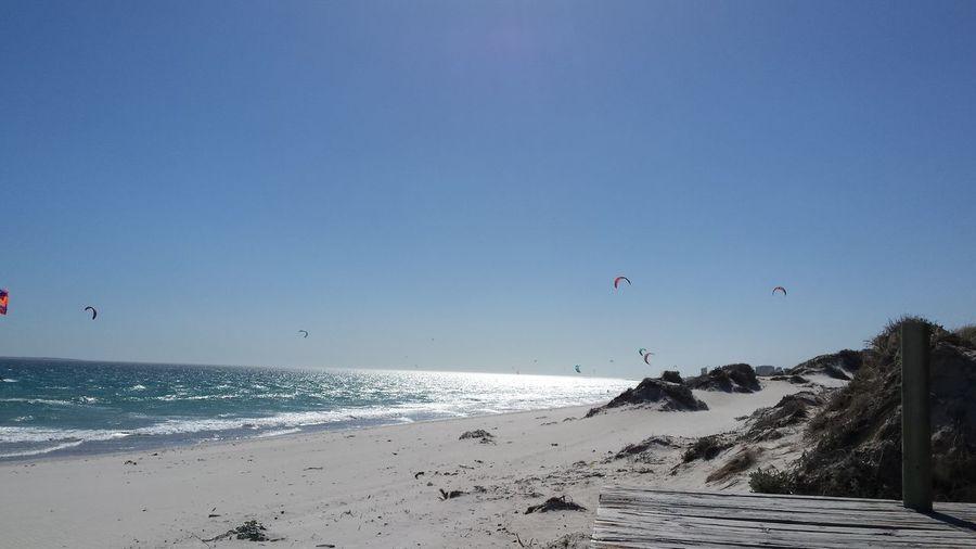 Birds flying over beach against blue sky