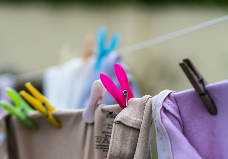 the pink peg Clothes Pegs Choice Close-up Clothesline Clothing Day Drying Focus On Foreground Group Of Objects Hanging In A Row Laundry Multi Colored Nature No People Pink Color Purple Selective Focus Still Life Variation
