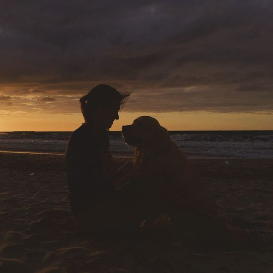 Woman sitting with dog at beach against sky during sunset