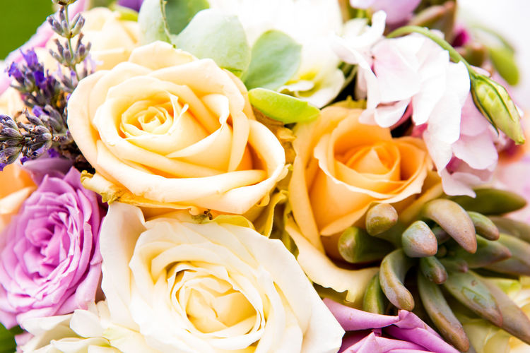 Celebration Wedding Beauty In Nature Bouquet Close Up Close-up Day Flower Flower Head Flowers Fragility Freshness Nature No People Outdoors Petal Rose - Flower Rose Flower Roses Springtime Wedding Day Yellow