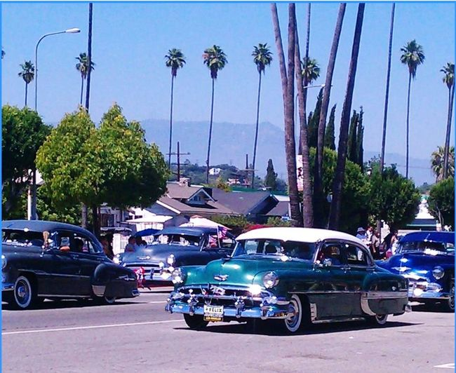 Oldies but goodies Los Angeles, California Low Riders Oldies Parade Bombs Chicano City Palm Tree Car Sky