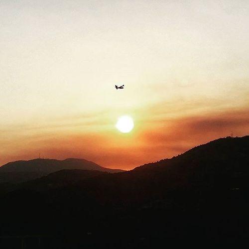 Liguria a fuoco 😠 😠 😢😢 Onore ai piloti Canadair veri Topgun Taggia Armaditaggia Valleargentina Incendio Ic2_works_ingegneriacontemporanea