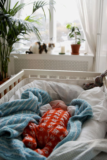 A baby boy sleeping in his crib with a cat watching. Baby Bedroom Cat Home Interior Indoors  Relaxation Sleeping Toddler
