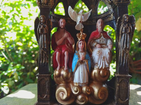 Human Representation Religion No People Cultures Spirituality Statue Female Likeness Sculpture Figurine  Close-up Tree Indoors  Day Desfocus Brasil Brasilien Goias Culture Culture And Tradition Saints God Mary