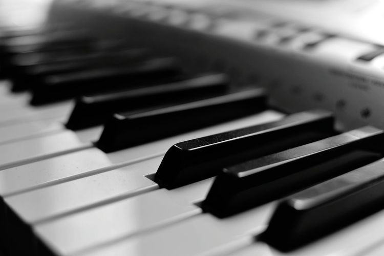 Synthesizer Music Keyboard Instrument Arts Culture And Entertainment Close-up NYC Musical Instrument Playing Blackandwhite