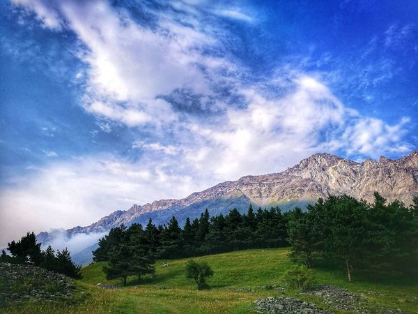 Mountain Cloud - Sky Mountain Range Beauty In Nature Galaxy Space Beauty In Nature Sky Grass Tree Landscape Nature No People Freshness HuaweiP9 Greenfields Huaweiphotography Mobilephotography Huawei P9 Leica Nature Naturephotography Grorgia Kazbegi Mountains Kazbegi