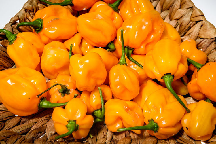 Yellow orange ripe habanero hot chili peppers on a wooden plate from caribbean or mexico. Isolated on white. Capsicum Annuum Chili Pepper Hot Pepper Plant Bunch Capsaicin Capsicum Capsicum Chinense Capsicum Pepper Chili  Fruit Group Habanero Habanero Orange Habanero Yellow Homegrown Hot Peppers Isolated White Background Organic Organic Food Pepper Studio Shot Vegetable Yellow