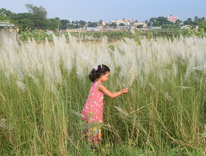 childhood Kans Grass people girl Children clouds and sky leisure activity playplace diabari Bangladesh 🇧🇩 EyeEm Selects EyeEmNewHere mix yourself a good time বাংলাদেশ no Childhood Kans Grass People Girl Children Clouds And Sky Leisure Activity Playplace Diabari Bangladesh 🇧🇩 EyeEm Selects EyeEmNewHere Mix Yourself A Good Time বাংলাদেশ No Edit/no Filter Done That. Been There. Lost In The Landscape The Week On EyeEm Bangladesh Premium Collection Connected By Travel Eye4photography  Eye Em Selects Second Acts Perspectives On Nature Rethink Things Postcode Postcards Be. Ready. Perspectives On People Step It Up One Step Forward EyeEm Ready   AI Now Fashion Stories Press For Progress Colour Your Horizn Stories From The City Inner Power
