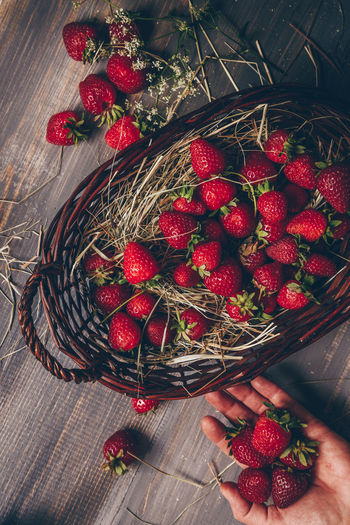 Freshly picked strawberries Basket Berry Fruit Close-up Container Directly Above Food Food And Drink Freshness Fruit Garden Harvest Healthy Eating High Angle View Human Hand Indoors  Large Group Of Objects Moody Red Ripe Rustic Style Still Life Strawberry Table Wellbeing Wood - Material The Still Life Photographer - 2018 EyeEm Awards