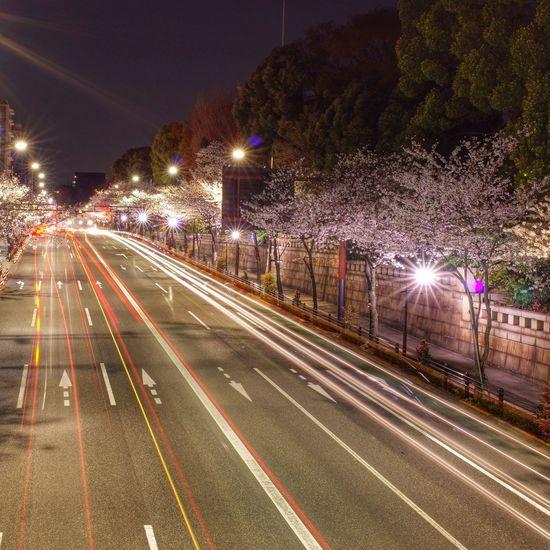 田安門 九段下 Nightphotography Night Lights