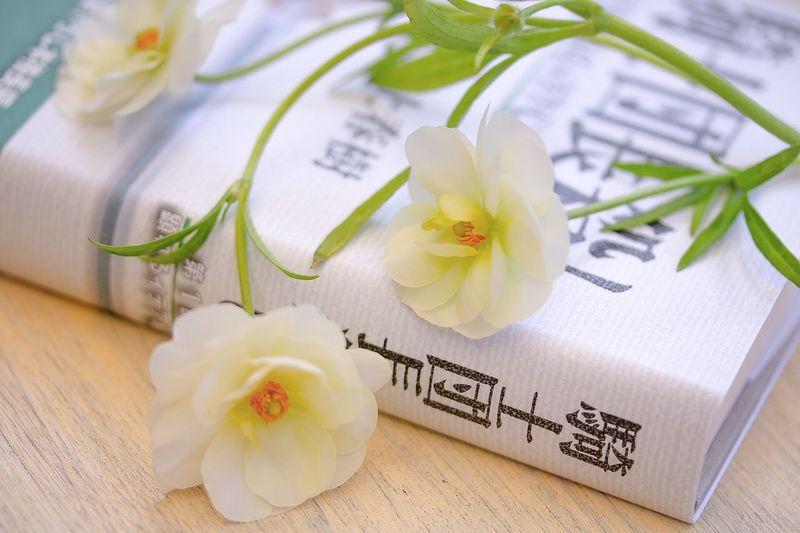 I love Haruki Haruki Murakami Book Booklover Flower Petal Flower Head No People Freshness Ranunculus Still Life Day Lifestyles EyeEm Gallery