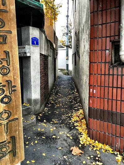 韓国 Korea Koreatown の 裏路地 Back-alley シリーズ04。この路地は、ラグビー選手や力士だと通れない幅…バックパックがあると、荷物をおろさないとすれ違えない。向こうからチャリが来て、横道のあるところまで戻る必要があった。(;^_^A EyeEm Korea Streetphotography テジョン