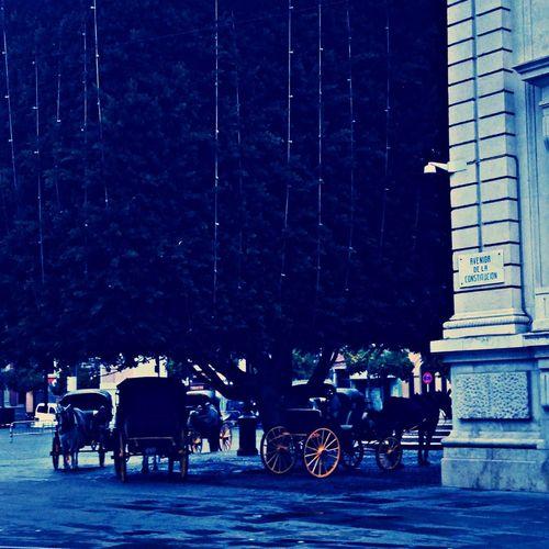 Street Sevilla