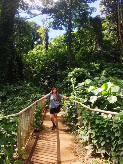 Hawaii adventures 🌺 Tree Nature Forest Outdoors