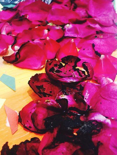 Burnt Rosé Red