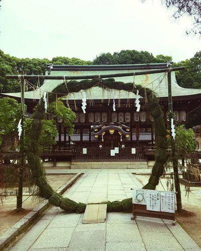 @ Shrine @ 今宮神社 @ 京都