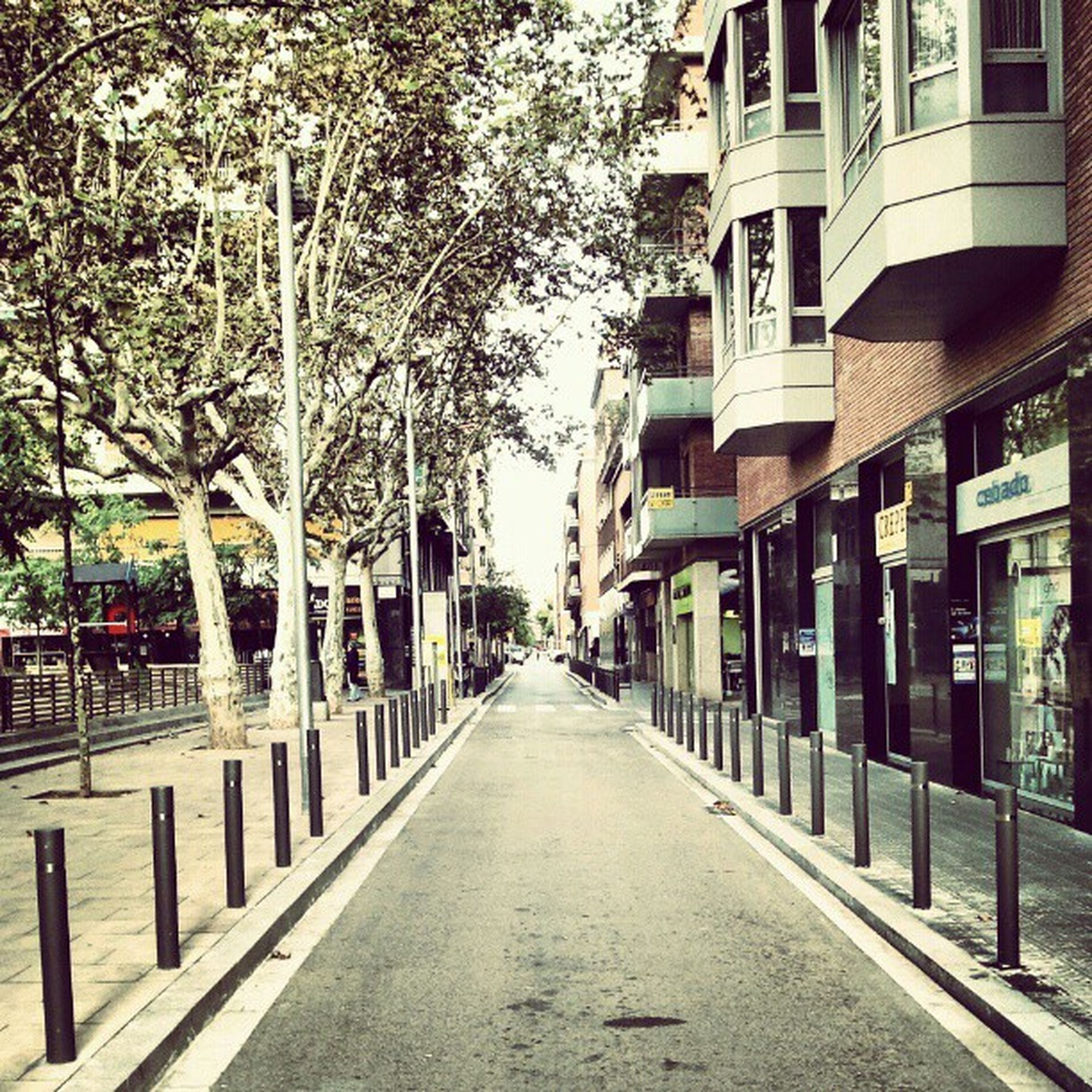 architecture, building exterior, built structure, the way forward, diminishing perspective, tree, city, street, vanishing point, treelined, residential building, building, empty, footpath, road, street light, transportation, in a row, bare tree, walkway