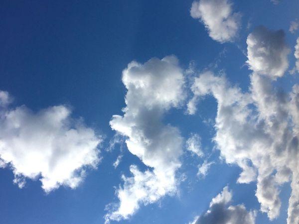 ちょっと前に 出逢ったソラ♡ ハートが 離れちゃったけど… ハピハピ(*´罒`*)♥ニヒヒ 今日も 晴れたじょ❁.*・゚ 素敵な1日を 過ごしてにゃ( * ॑꒳ ॑* )♪ 青空 ハピハピ キミといっしょに 繋がるソラ キミに届け Blue Sky Happiness Nature Beauty In Nature Blue Cloud - Sky Eye Em Nature Lover Happyday Natural Beauty Natural_love Hearts