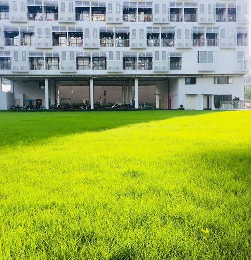 factory domi Building Exterior Day Residential District Building Growth Field Nature