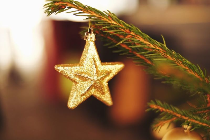 Twinkle twinkle litlle star. Star Shape Christmas Decoration Christmas Close-up Hanging Christmas Ornament Celebration No People Tree Topper Christmas Tree Indoors  Day