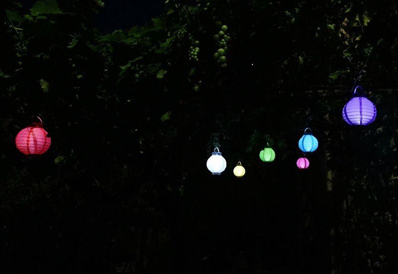 Basta poco per dare Colore alle Notti più buie Lanterne Pergola Uva Umbria Italy Colour Of Life