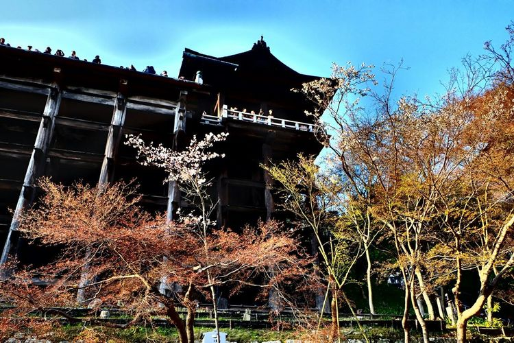 Kiyomizu-dera Kyoto Historical Taking Photos