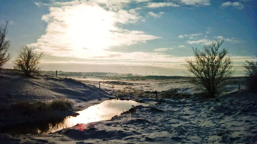 Vinter Vinter Sun Taking Photos Sunset Sky And Clouds Nature Creative Light And Shadow Nature Photography
