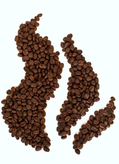 coffee beans steam shape Hot Coffee Coffee Shop Coffee Coffee Bean Roasted Coffee Bean Copy Space Steam Food And Drink Pattern Studio Shot Still Life Creativity Close-up Brown Shape Coffee White Background