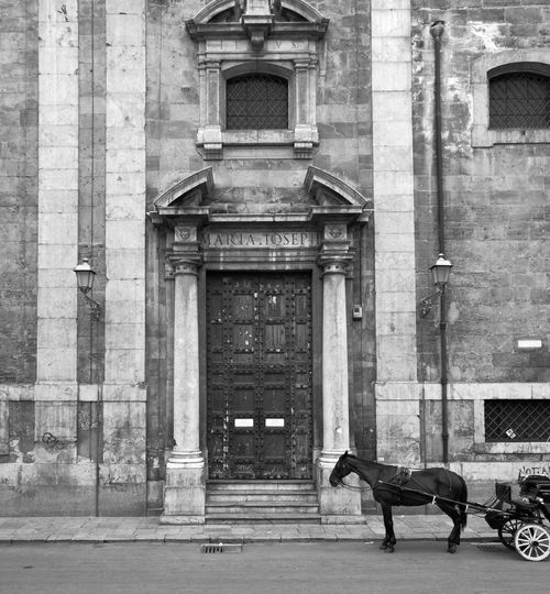 Palermo Horse Cart Working Animal Entryway Open Door Horseback Riding Carriage Pets Horse Closed Door Bridle My Best Travel Photo