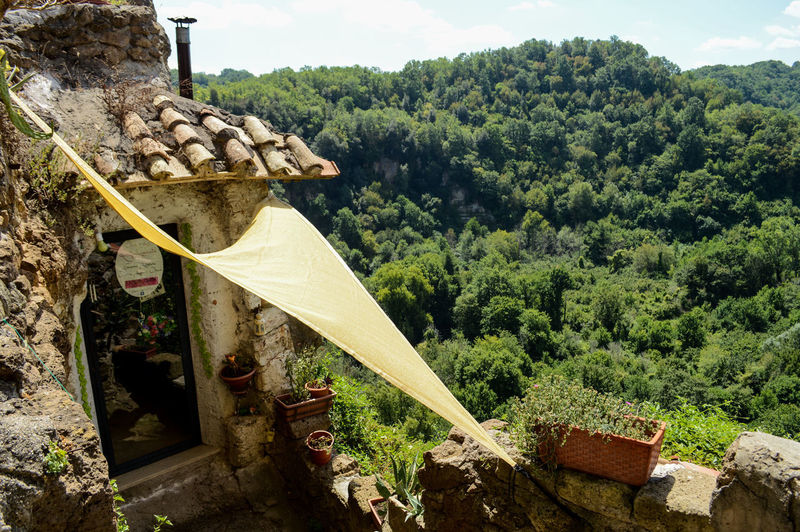 Architecture Calcata Day Forest Hanging Italy Mountain Nature No People Old House Outdoors Town Tree Village