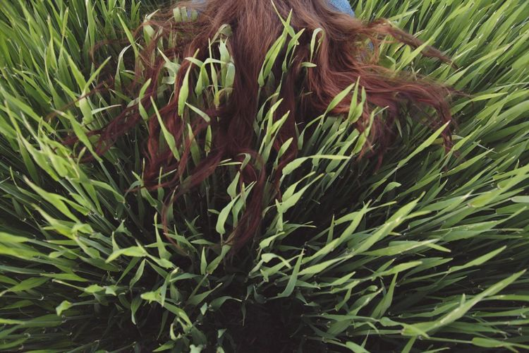 Hair Field Grass Creative Perspective Rare View People Green Color Nature Plant Agriculture Field Beauty In Nature Outdoors Leaf Cereal Plant Freshness Growth Red Hair High Angle View Break The Mold Art Is Everywhere TCPM The Portraitist - 2017 EyeEm Awards BYOPaper! Live For The Story Be. Ready. A New Beginning This Is Strength
