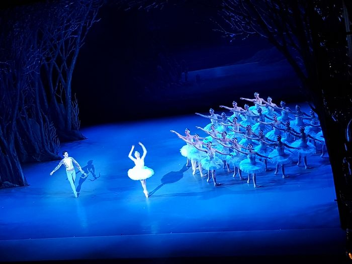 Swan Lake Ballett Ballet Classic Ballerina Unforgettable Dance Best Concert Blue Blue Lights  Arts Culture And Entertainment Best Performance Ever Performance People Beauty No Filter Real People Inspirational Noedit Indoors  Swans Swans On The Lake Theatre Of Opera And Ballet Tiflis Georgia Stage