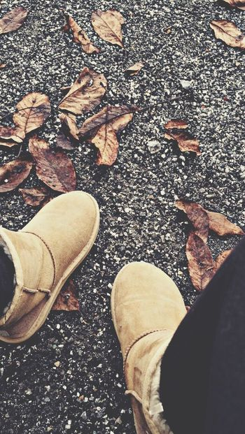 Feuilles Bottes Froid ❄️❤️