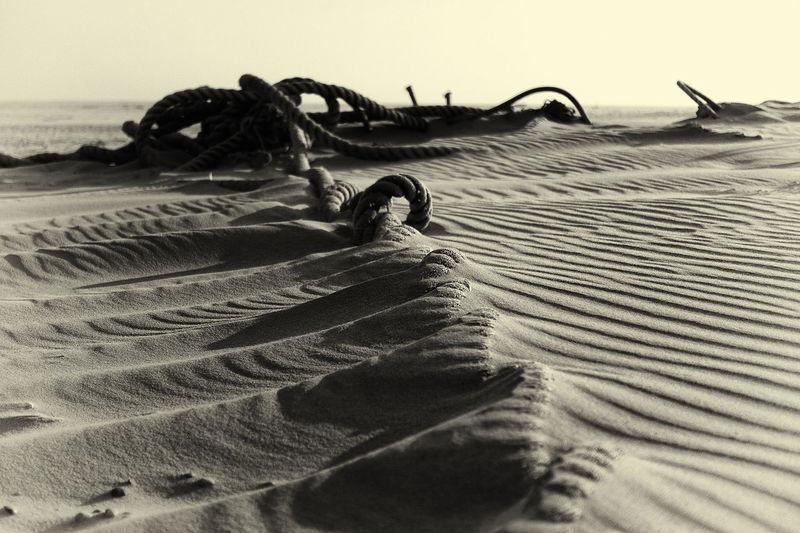 Deserts Around The World First Eyeem Photo