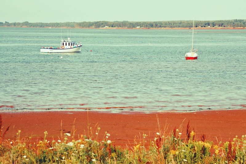 Summer Views Prince Edward Island Canada Beachphotography Red Sands