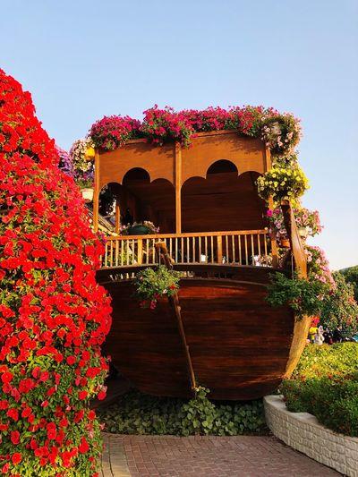 Flower boat Dubai Parks MiracleGarden Garden Decor Decorative Plants Flower Boat Architecture Built Structure Plant Building Exterior Nature Sky Flower Flowering Plant Arch Decoration Red Garden Outdoors