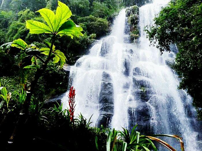 Cachoeira Véu da Noiva. ParqueNacional Itatiaia FeelTheNature