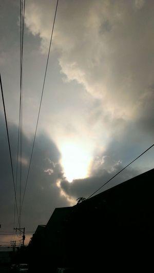 The light ……