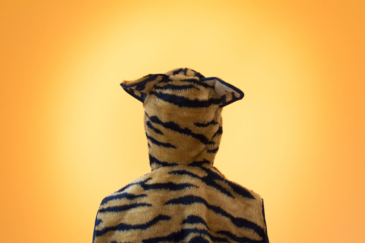 Rear view of person in tiger costume in front of orange background