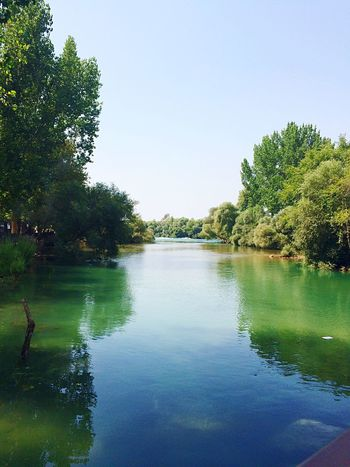Manavgat Waterfall Green Color Peaceful Beauty In Nature Tree Waterfront Tranquil Scene Clear Sky Calm Nature Scenics Vacations First Eyeem Photo